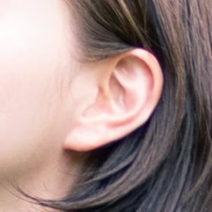耳(みみ)