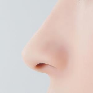 鼻(はな)